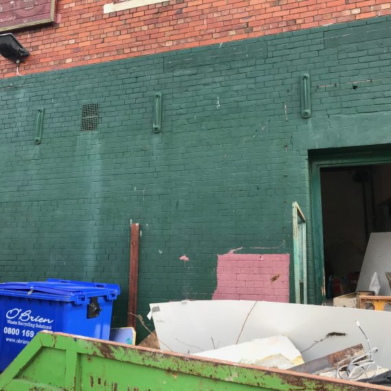 Edmundson Building and Preservation - The Chameleon